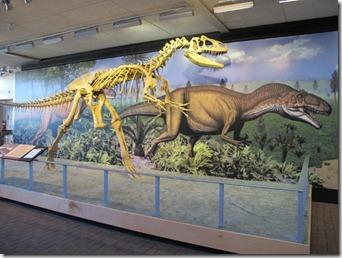 706 allosaurus (640x480)