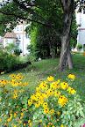 Salvagarten 015.jpg