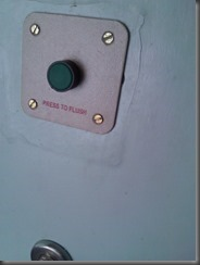Electronic flush button