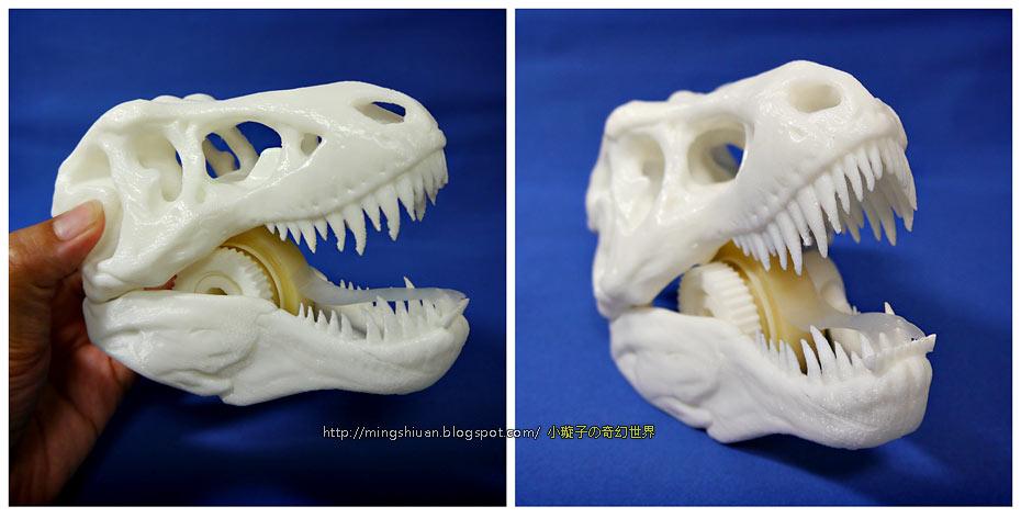 T-Rex-Tape07.jpg