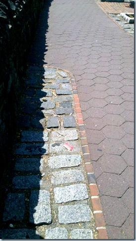 Sunny Sidewalks_11-49-49_2
