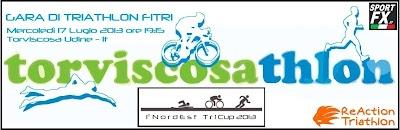 logo-torviscosathlon.jpg