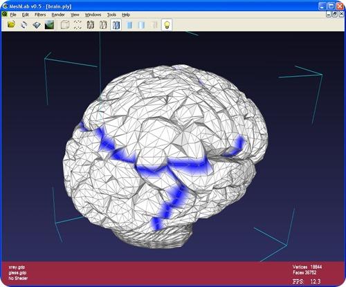 MeshLab.brain