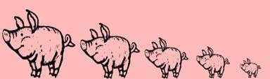 5 Pigs
