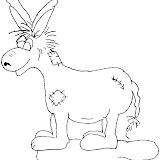 burro_7.jpg