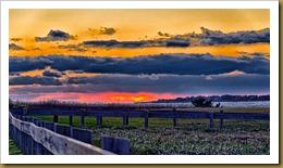 - Sunset sachuestD7K_1864 January 02, 2012 NIKON D7000