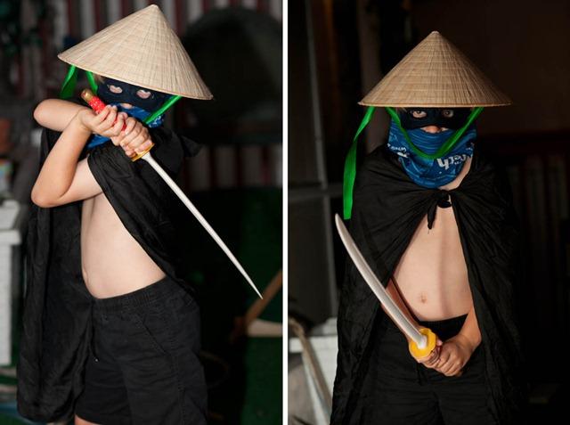 ninja diptych
