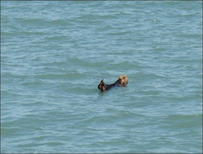 2013_08_Alaska 107