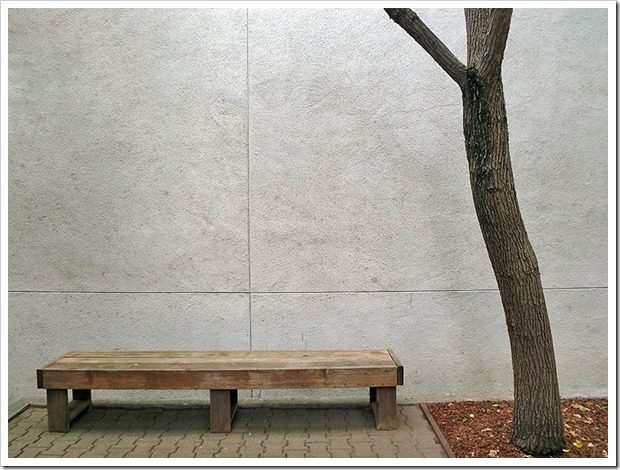 110925_tree_and_bench