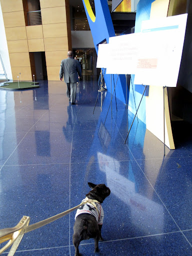 Wow, this lobby is very impressive - I just love the sapphire-blue flooring.