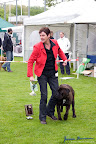 20100513-Bullmastiff-Clubmatch_31004.jpg