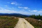 Typowa szutrowa droga w Górach Izerskich. Trochę w górę, trochęw dół.