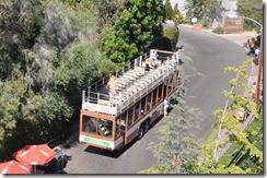 San Diego Zoo 19