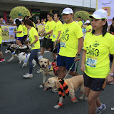 Pet Express Doggie Run 2012 Philippines. Jpg (40).JPG