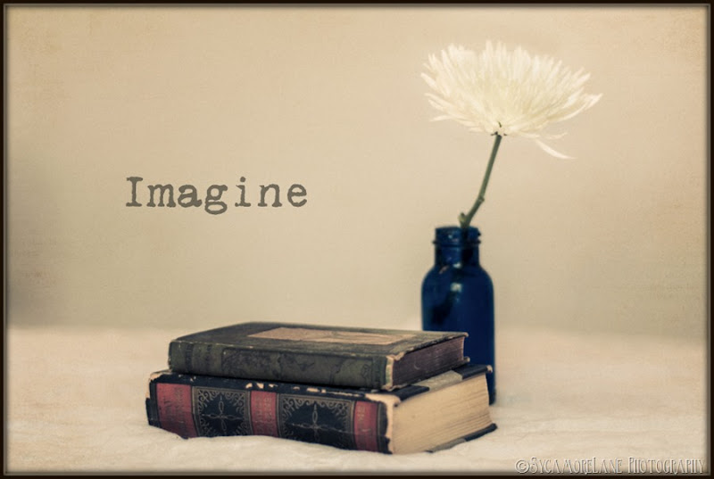 books and chrysanthemum-SycamoreLane Photography-001