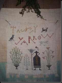 tansy yarrow rue sampler, full view