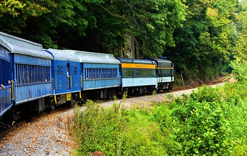 Potomac Eagle train16