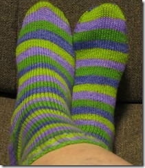 Lavendar Fields Socks Complete