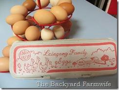egg carton - The Backyard Farmwife