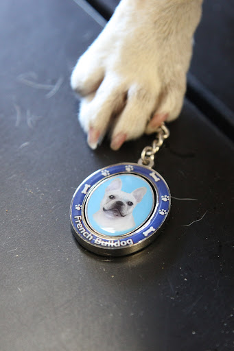 Look, Francesca!  They have a keychain for French Bulldogs and it looks like me!  Oh, we should get this for Uncle Carlos!