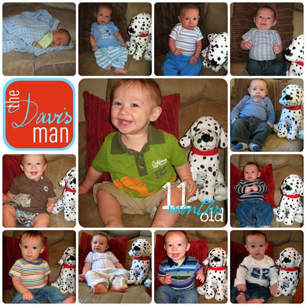 0to11 month collage