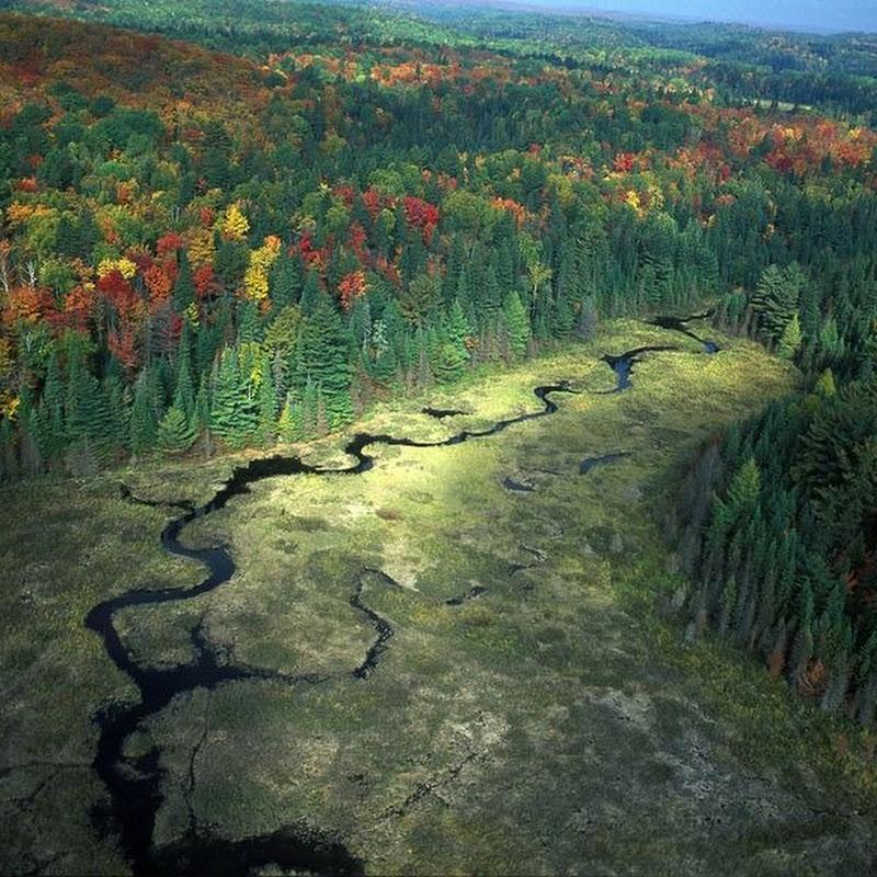 Algonquin Provincial Park, Canada in Autumn