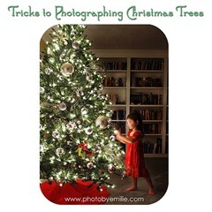Photographing Your Christmas Tree[5]
