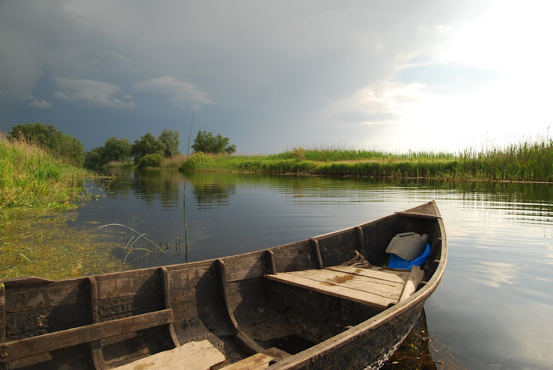 An old rowing boat from the Danube Delta, Romania.