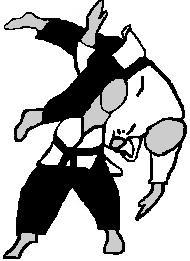 danzan-ryu-jujitsu.JPG