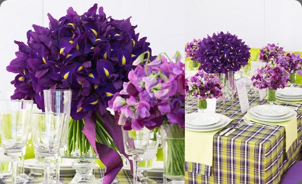 events01_zoom belle fleur