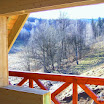 dom z drewna 2050.jpg