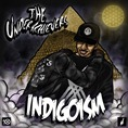 00 - The_Underachievers_Indigioism-front-large
