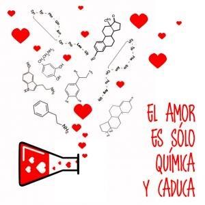 quimica del amor