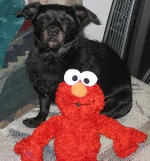 Kozmo & Elmo 3