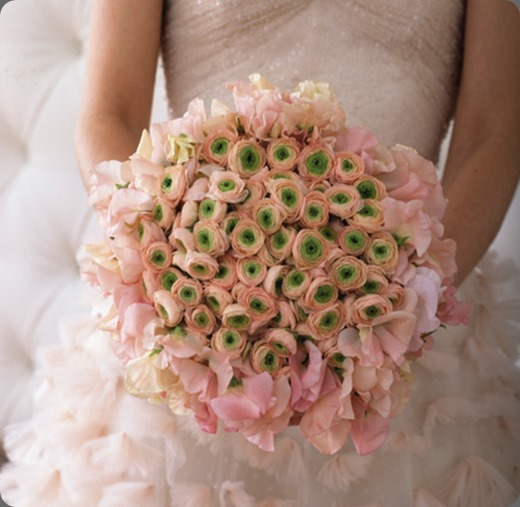 pink and green ranunculus wed_cl1_box belle fleur