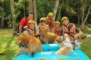 Pets Adventure 14 (10_1) (50)