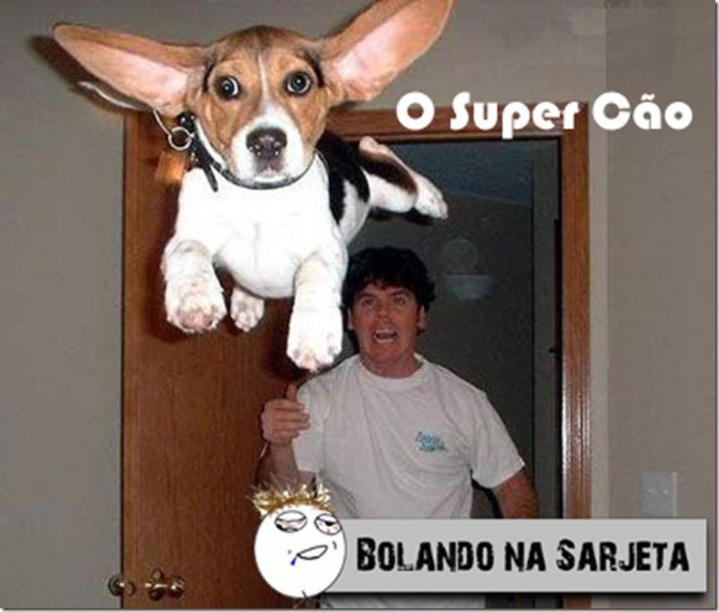 o super cão