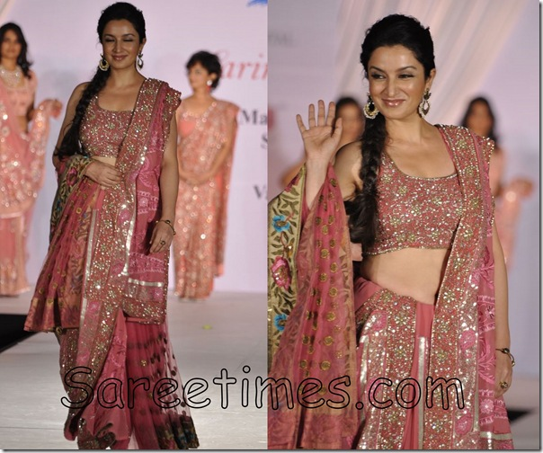 Tisca_Chopra_Embroidery_Saree