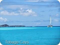 012 Tobago Cays