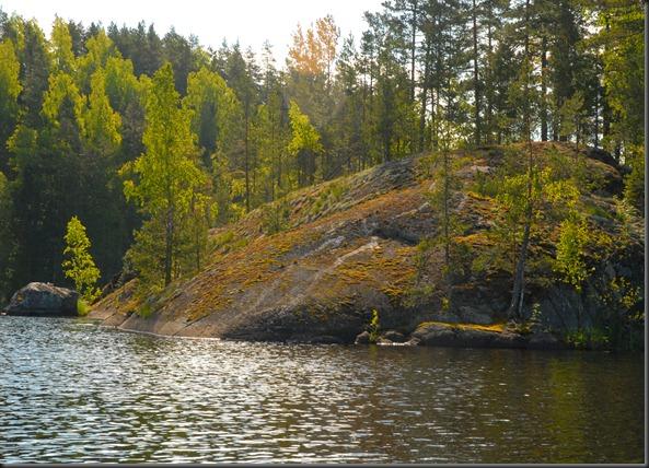 haukijärvi sudenkorento 033