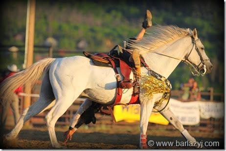 © www.barlazyj.com