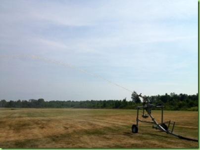 irrigation 2