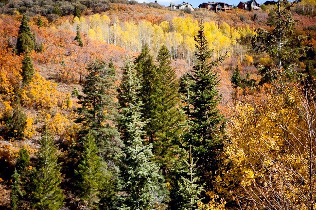 2013-10-12 Utah 89801