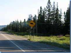 7839 Ontario Trans-Canada Hwy 17 moose crossing warning sign