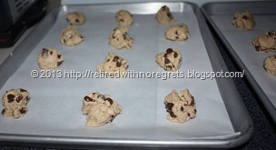 Simple Gluten-Free Chocolate Chip Cookies - portioned