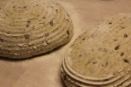 sourdough-seed-bread_1697