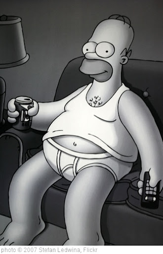 'Homer' photo (c) 2007, Stefan Ledwina - license: http://creativecommons.org/licenses/by-sa/2.0/