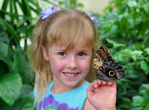 2013-07-05 butterfly pavilion (45)