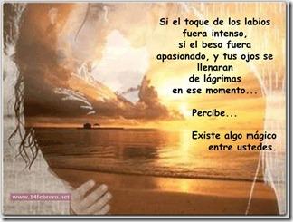 14febreroesto es amor (4)