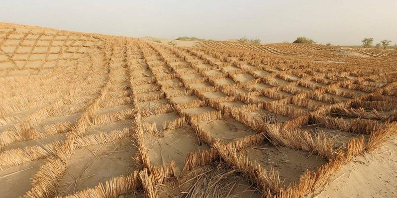 tarim-desert-highway-3
